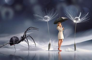 Ονειροκρίτης αράχνη