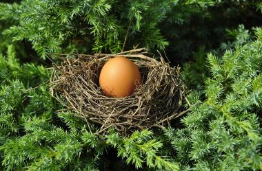 Ονειροκρίτης αυγά (αυγό)