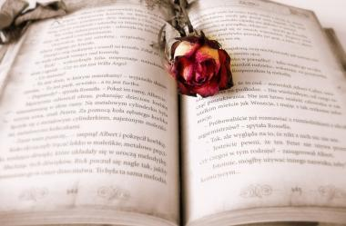 Ονειροκρίτης διάβασμα (διαβάζω - ανάγνωση)