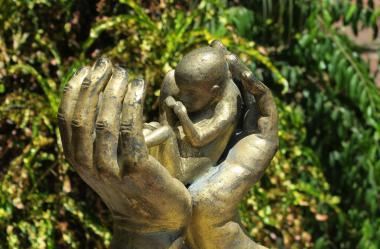 Ονειροκρίτης έκτρωση