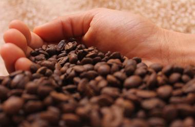 Ονειροκρίτης καφές