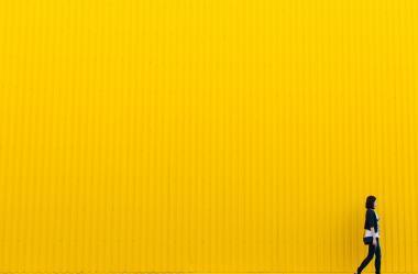 Ονειροκρίτης κίτρινο