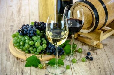 Ονειροκρίτης κρασί - οίνος