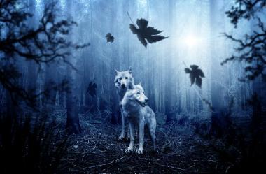 Ονειροκρίτης λύκος