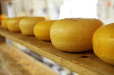 Ονειροκρίτης τυρί
