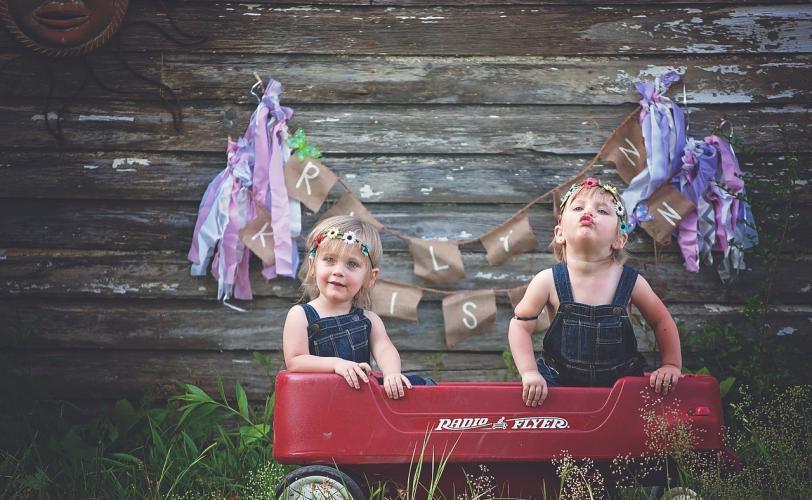 Ονειροκρίτης δίδυμοι - δίδυμα