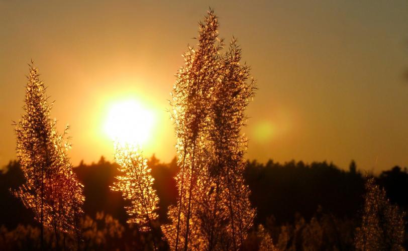Ονειροκρίτης δύση - ηλιοβασίλεμα