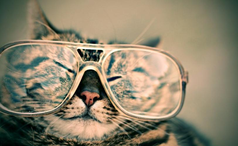 Ονειροκρίτης γυαλιά