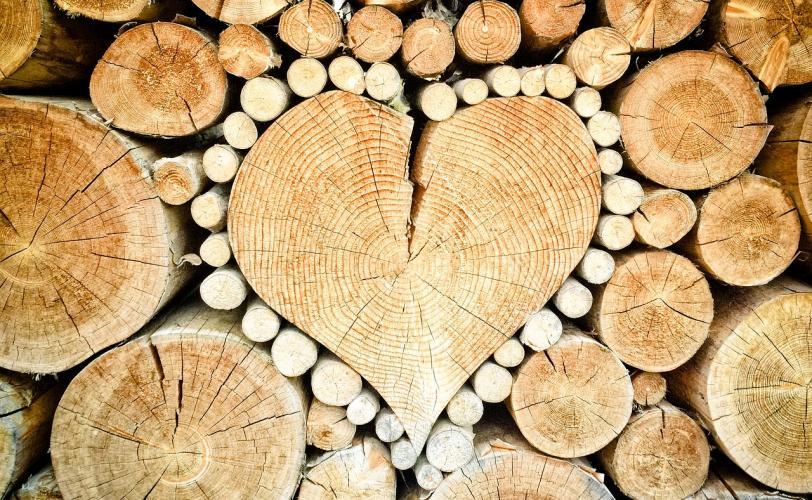Ονειροκρίτης ξύλα - καυσόξυλα