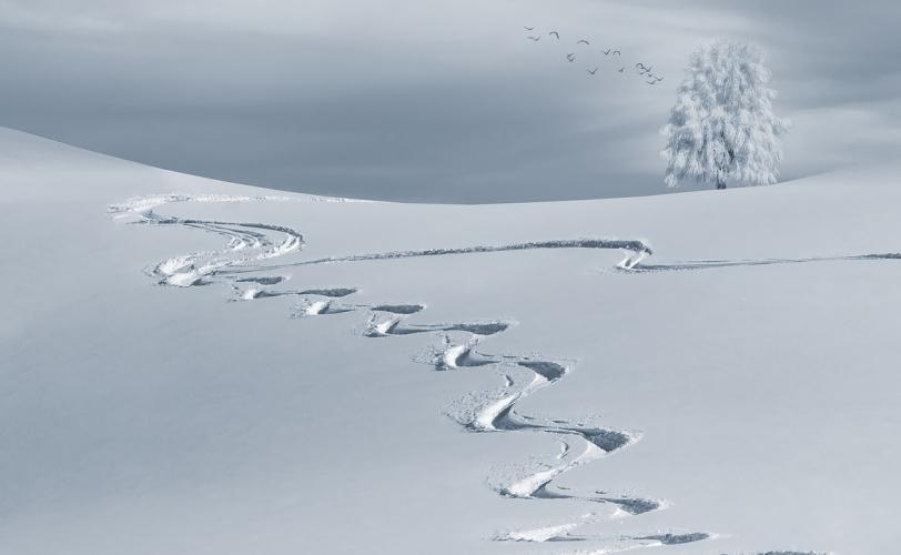 Ονειροκρίτης χιόνι